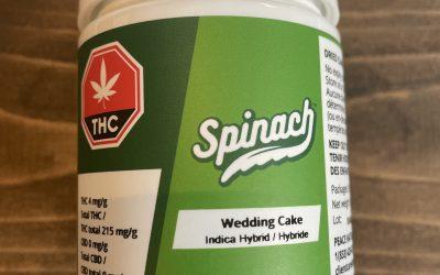 Flower Wedding Cake (Hybrid) Spinach